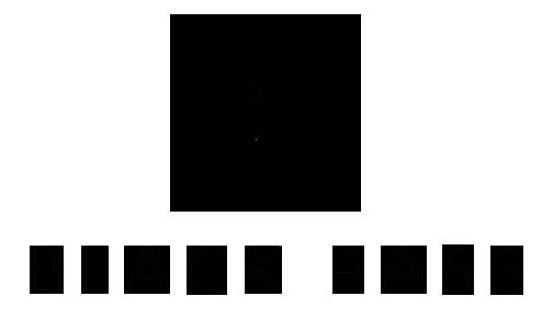 Black Pass Logo negro